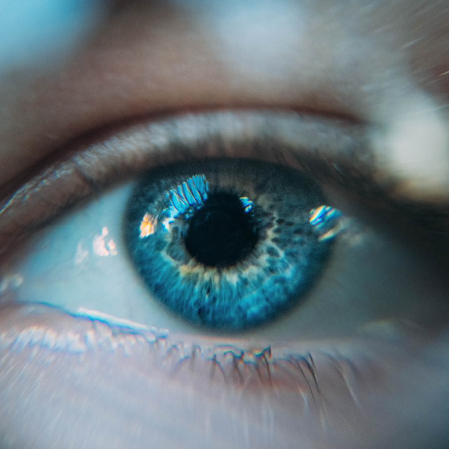 Maklo vision